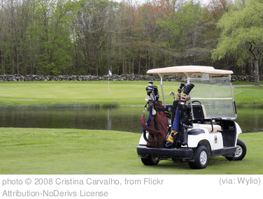 Golf Cart Insurance What You Need To Know Vaughn